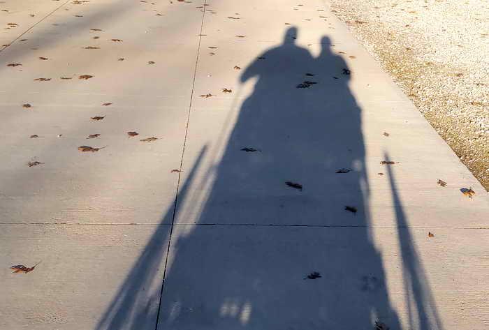 Driving Shadows