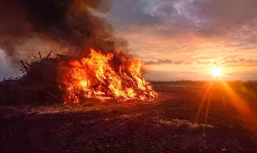 Burning Woodlot