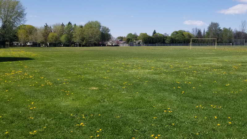Park in May 2021